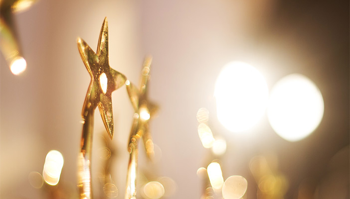 Photo of award trophies