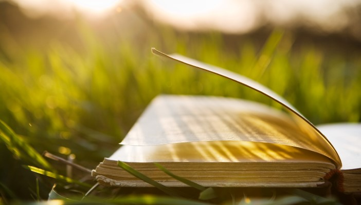 A book outside on the grass with sunlight coming down