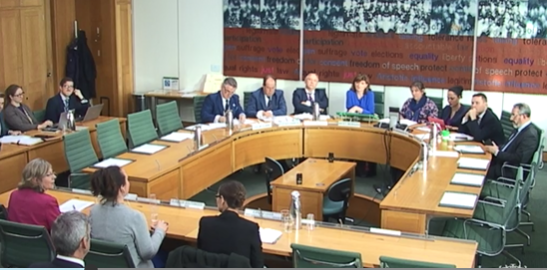 Eleanor Southwood giving evidence to the Treasury Select Committee