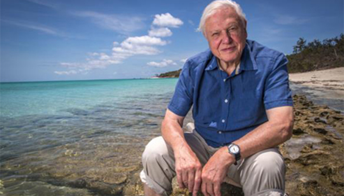 Sir David Attenborough sat in front of beach