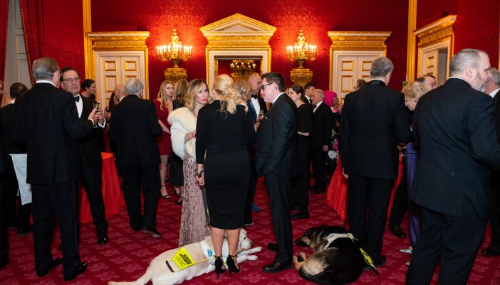 Patrons and guide dogs talking at a high class dinner.