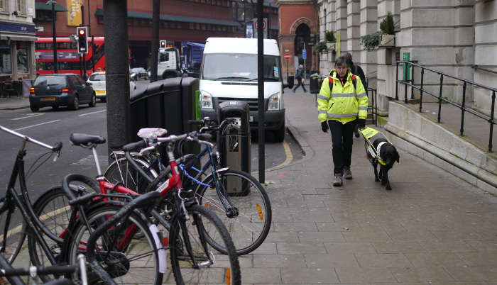 Image shows pedestrian with guide dog near the Judd Street and Euston Road intersection