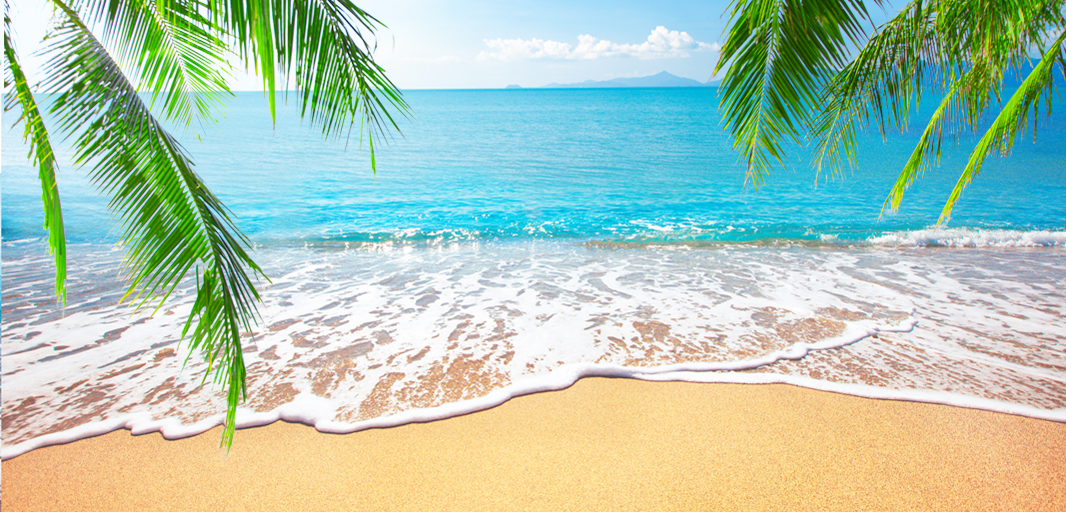 A beach with clear blue water