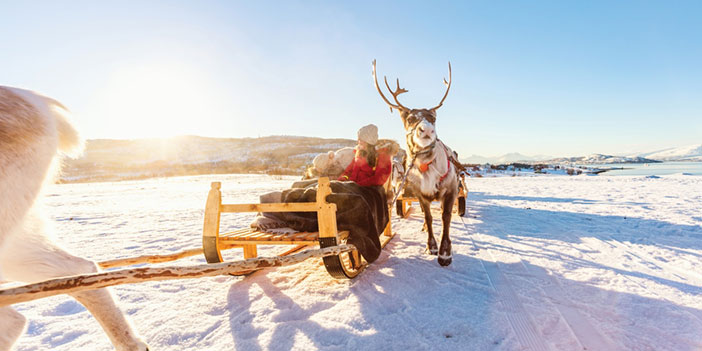 Reindeer pull a sleigh in a snowy landscape.