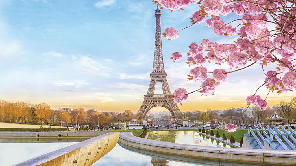 Picture of the Eiffel Tower with the River Seine and cherry blossom in the foreground