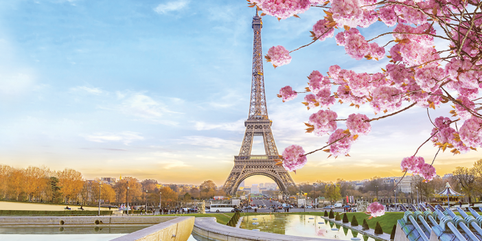 Picture of the Eiffel Tower with the River Seine and cherry blossom in the foreground.