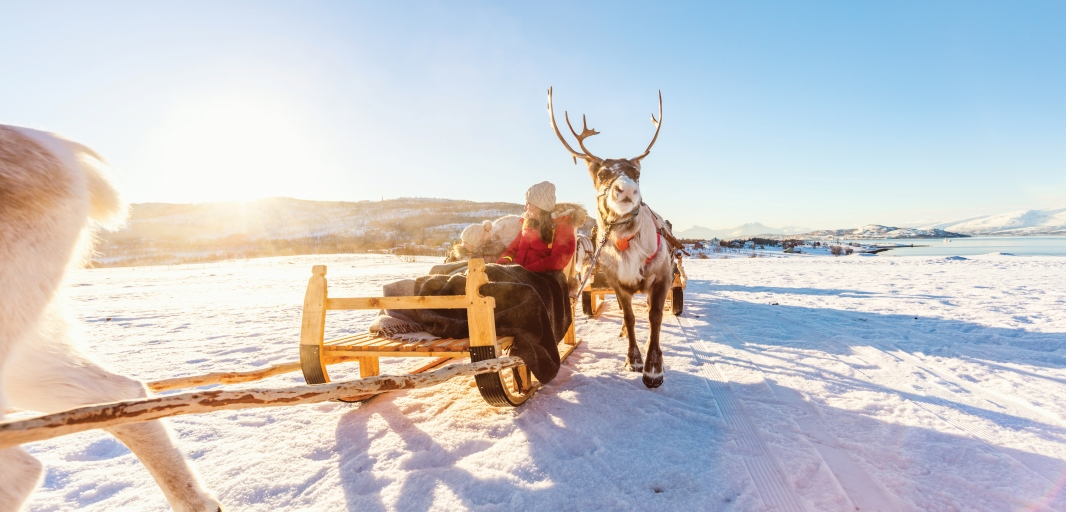 A woman and child sitting on a sledge in the snow with a reindeer in front and next to them.
