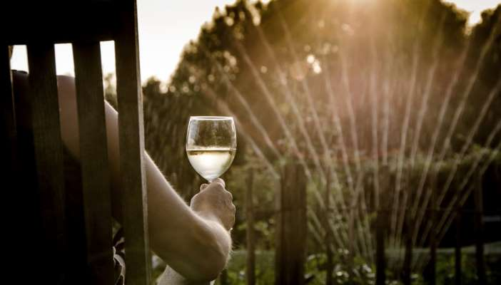 A man sat on a chair in his garden, holding a glass of wine