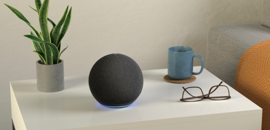 A new Amazon Echo sitting on a table, with a pot plant, a pair of glasses and a cup.