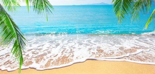 White sandy beach and palm trees