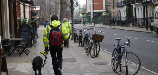A person with a guide dog viewed from behind. They are walking down a street with a cafe on their left.